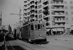 03_Alexandria - Streetcar (usbpanasonic) Tags: alexandria mediterranean northafrica egypt transportation streetcar trams egypte cablecars  egyptians misr alexandrie masr egyptiens