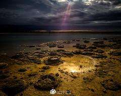 Ancient Life - Stromatolites Cervantes WA (Gary Hayes) Tags: australia cervantes westernaustralia oceania