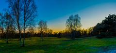 4151 (evolvingLight) Tags: sunset nature germany landscape scenery sonnenuntergang landschaft ruhrgebiet heide ruhrarea westruper