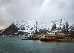 Orange Houses (Waldemar*) Tags: houses mountain tourism yellow norway landscape islands town fishing fisherman nikon scenery village scenic salmon fjord scandinavia cod lofoten archipelago nordland rorbuer rorbu sakrisy afs1635mmf4gvr d800e 68n 68degreesnorth 68parallelnorth 68north