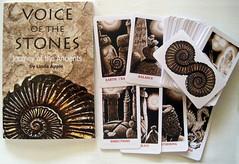 Voice of the Stones (L. Apple Originals) Tags: spiritualguidance wisdomcards inspirationcards oraclecards guidancecards dailyguidancecards meditationcards