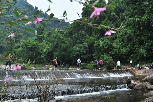 Do đặc trưng địa hình núi cao, khí hậu trong lành, mát mẻ của khu rừng nguyên sinh, những suối nước trong mát, thích hợp cho những chuyến picnic, leo núi khám