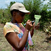 Rwandan policy makers visit Nyando climate-smart villages