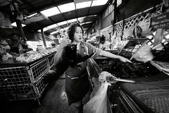 Flickr_Bangkok_Klong Toey Markey-21-04-2015_IMG_9705 (Roberto Bombardieri) Tags: food thailand market tailandia mercato klong toey