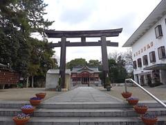(MRSY) Tags: japan shrine nara yamatotakada