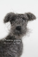 My instagram giveaway! @manomine (miaki) Tags: sculpture dog wool felted toy grey miniature handmade small mini needlefelted needlesculpting manomine