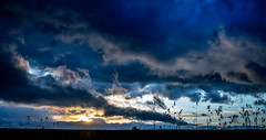 Rain is coming( Happy Victoria Day Weekend)  (T.ye) Tags: light sunset sky cloud sun sunlight plant grass silhouette river dark landscape outdoor bank todd  ye
