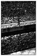 Double-Locked - Paris, France (gastwa) Tags: city travel urban blackandwhite bw white black paris france love film water monochrome seine river lens landscape prime nikon scenery kodak tmax f14 g andrew 400 locks 58mm afs f6 gastwirth andrewgastwirth