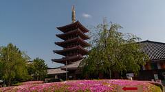 Senso-ji pagoda (TheSpaceWalker) Tags: japan temple sensoji photography japanese tokyo pagoda photo pic 1750 asakusa tamron jpn d300 thespacewalker