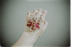 flowers.on.my.skin. (dieFlow) Tags: flowers self nikon hand experiment naturallight indoor blte selbstportrait serie hortensie
