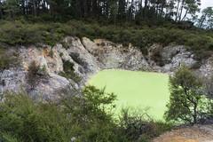 Waiotapu, New Zealand (Quench Your Eyes) Tags: travel newzealand rotorua nz northisland waiotapu thermalpark devilsbath northislandnewzealand waiotaputhermalwonderland waiotapuscenicreserve waiotapulooprd
