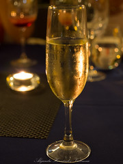 Glass of cava (Alejandro Hernndez Valbuena) Tags: life food white black glass yellow vertical closeup dinner flow one bottle stem wine drink background object champagne beverage catalonia winery celebration alcohol squirt splash spill refreshing celebrate splatter cava isolated tempting cooling splashing splattering tradiction