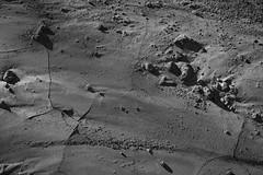 watermark (edwardpalmquist) Tags: vegas blackandwhite texture nature monochrome desert lasvegas nevada henderson