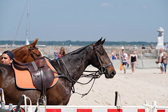 on the beach II (anaspringfeldt) Tags: warnemnde beachpolo poloriviera