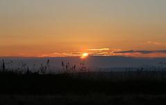 Setting Sun. (aitch tee) Tags: sunset settingsun pembrokeshirecoastnationalpark bbcwalesnature