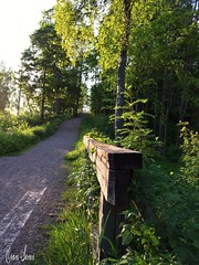 Going on an adventure (Esan Semi) Tags: road summer sun plant flower tree green sunshine oslo norway day outdoor adventure