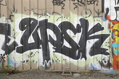 UPSK (hwhoo-hwhare) Tags: 206 upsk