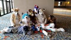 Dream Machine Photoshoot FWA 2015 - Shots by Lykanos (25) (Lykanos) Tags: furry photoshoot dreammachine fwa fwa2015 dmcostumes