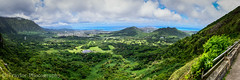 Pali lookout (Traylor Photography) Tags: panorama cliff nature landscape three photo stitch windy palilookout