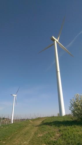 Windräder bei Zornheim