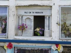 """Cimetière Punta Arenas <a style=""""margin-left:10px; font-size:0.8em;"""" href=""""http://www.flickr.com/photos/83080376@N03/17138312888/"""" target=""""_blank"""">@flickr</a>"""