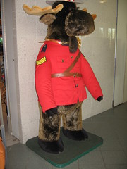 Spied in the ubiquitous Gift Shop in the CN Tower (Shirley Pickthorne-Elliott) Tags: stuffedtoy shopping cntower rcmp