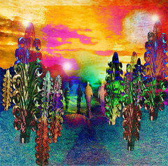 Where the trees have leaves of prisms (virtually_supine) Tags: music film collage forest photomanipulation bright creative surreal vividcolour textures montage lensflare layers abstraction psychedelic paintdaubs easyrider glassornament hss digitalartwork rainbowcolours glassfeather sliderssunday photoshopelements13 kreativepeopletreatthis131 sourceimageglassfeatherbyxandram iwasntborntofollowbythebyrds