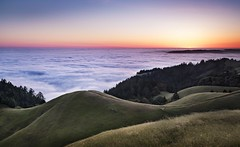 Mt. Tamalpais Sunset (Karen Kaner Photography) Tags: ocean sunset sky mountain nature water weather fog clouds landscape outdoors coast seaside spring nikon hiking marin trails hills mttam marincounty hillside naturephotography mttamalpais goldenlight ggnra 2016 coastalfog landscapephotography amazingviews beautfiullight kanerphotography