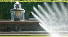 A Hot Summer Day at Baden-Baden 02 (MJWoerner49) Tags: roses summer spring fountains badenbaden rosegarden cooling summerday gnneranlage lichtentalerallee josephinefountain lichtentaleralley josephinenbrunnen