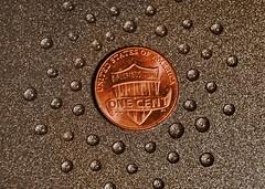 Tiny Water Drops (Caroline.32) Tags: macro water penny waterdrops cookiesheet teflon nikond3200 extensiontube20mm macromondays 18140mmlens smallerthanacoin