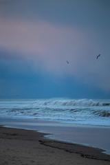 Splashdown (haddartist) Tags: ocean sunset sky seagulls seaweed reflection bird beach colors weather birds clouds evening coast virginia sand surf waves break moody cloudy dusk wave atmosphere spray textures coastal oceanside foam coastline unusual virginiabeach swell breaking oceanfront