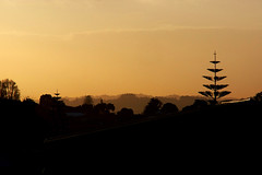 Aorere Sunrise (Bryan Gellatly) Tags: sunrise southauckland