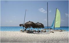 A primera fila en la platja Sirena.  (Cayo Largo - Carib -Cuba) (Antoni Gallart i Vilarrasa) Tags: sea sky beach vacances mar sand holidays sony playa cel arena cielo catamaran caribbean carib vacaciones platja parasols caribe sorra parasoles lenshoods catamar catalarn