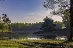 De Zwarte Dennen, Punthorst (wim.kanis) Tags: netherlands sunrise nikon nederland natuur wim hdr overijssel zwarte kanis d610 dennen zonsopkomst punthorst