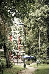 Parque Municipal- Belo horizonte (Johnny Photofucker) Tags: park parque parco minasgerais verde green belohorizonte rodagigante bh lightroom parquemunicipal
