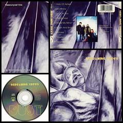 #HappyAnniversary 20 years #ScreamingTrees #Dust #album #grunge #neopsychedelia #music #90s #90smusic #90sgrunge #backtothe90s #GaryLeeConner #VanConner #MarkLanegan #BarrettMartin #GeorgeDrakoulias #90salbum #90sCD #90sband #backtothenineties Screaming T (victor.nils) Tags: music album grunge dust 90s happyanniversary marklanegan 90smusic screamingtrees garyleeconner neopsychedelia barrettmartin vanconner backtothe90s 90sband 90sgrunge backtothenineties 90scd 90salbum georgedrakoulias