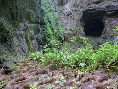Rio Camuy caves sinkhole  (6)