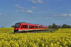 P1930720 (Lumixfan68) Tags: eisenbahn db lint alstom bahn deutsche regio züge 648 triebwagen baureihe coradia dieseltriebwagen 41h