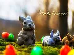 Frohe Ostern! (AndiZ275) Tags: old holiday bunny art water rural germany easter pull bavaria spring ancient paint european village symbol outdoor traditional religion jesus rustic birth egg decoration franconia christian well christianity tradition ornate fertility rite customs rustical