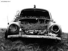 toter Kfer (markus_rgb) Tags: vw volkswagen beetle junkyard wreck kfer wrack schrottplatz
