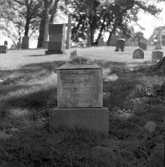Our Daisy (triebensee) Tags: blackandwhite film monochrome cemetery brooklyn zeiss memorial day greenwood 11 d76 hasselblad carl f28 planar 80mm 500cm selfdeveloped 2015 fujineopanacros100 fujifilmneopanacros100 brooklynian