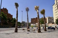 PLAÇA D'ANDRÉ MALRAUX (Yeagov_Cat) Tags: barcelona catalunya plaçadandrémalraux