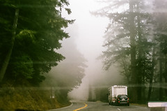 45470004 (danimyths) Tags: california trees mist film fog forest coast roadtrip pch redwood westcoast californiacoast filmphotography pacificcostalhighway
