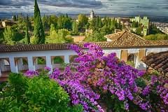 tejados de La Alhambra (Carlos M. M.) Tags: clouds garden andaluca granada nubes hdr jardn laalhambra canon100d