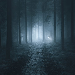The Search (Mikko Lagerstedt) Tags: art silhouette forest person photography search woods alone darkness flash fine figure flashlight cinematography mikko lagerstedt