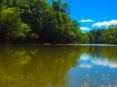 DSCN0688 (vhenryz) Tags: park trip trees sky cloud reflection nature water clouds forest river reserve calm national mangrove jungle brunei ulu temburong