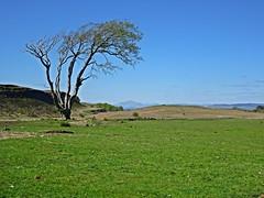 Walls & Ben (Bricheno) Tags: scotland escocia benlomond szkocja schottland scozia renfrewshire cosse howwood whittliemuir  esccia   bricheno scoia