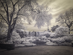 Carl Schurz Park, NYC  (Explore, May 16) (Mildred Alpern) Tags: park trees sky fence garden outdoors infrared benches figures pavingstones