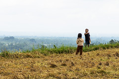 sawah 8 (Fakhri Anindita) Tags: bali nature field indonesia landscape photography nikon farm ubud sawah jatiluwih