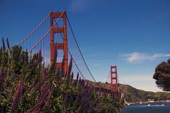 Golden Bridge (4 Eyes Photography) Tags: sanfrancisco california city usa color topf25 architecture landscape photo topv555 topv333 bravo cityscape fav50 outdoor unitedstatesofamerica fav20 goldengatebridge top100 fav30 topf100 favs fav25 fav100 fav200 fav300 fav40 fav60 fav90 fav80 fav70 superfave fav500 fav400 fav600 fav700 10fav10